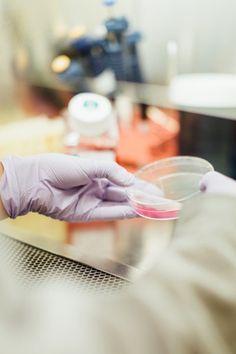 Chris Kresser: A gyomorégés és a GERD rejtett okai