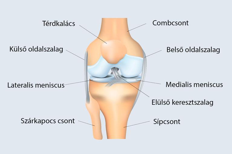 Liposuction | Sziluett Plasztika LézerCentrum