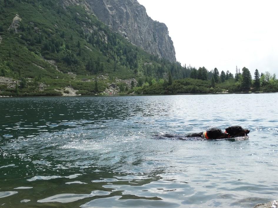 elképzelni fogyás föld o tavak