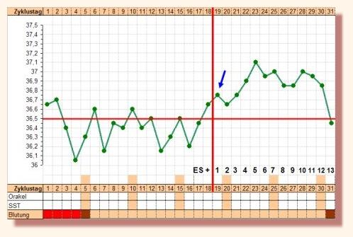 súlycsökkenési görbe elemzése)