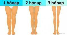 gepárd zsírégető