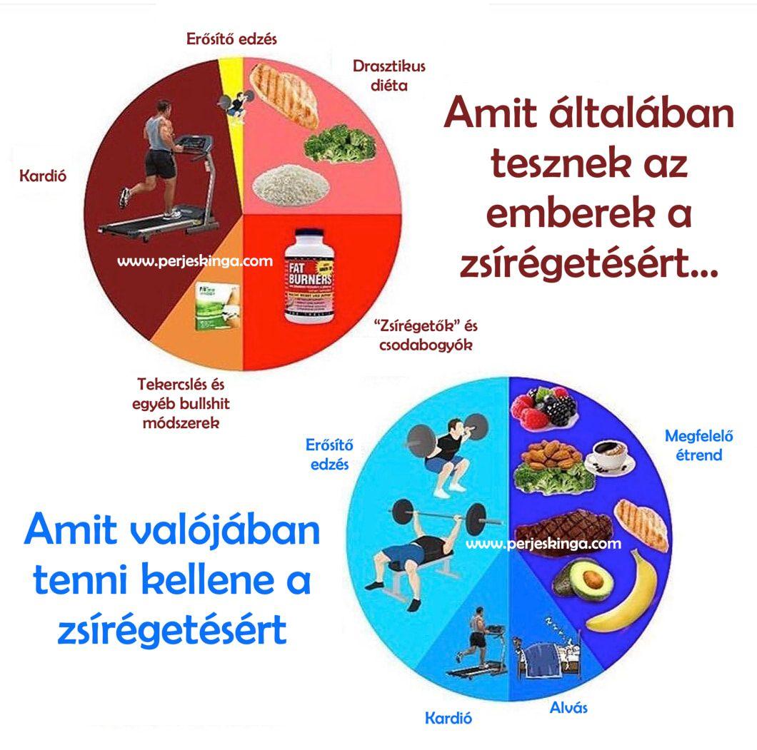 hogyan kell kezelni a zsírégetést)