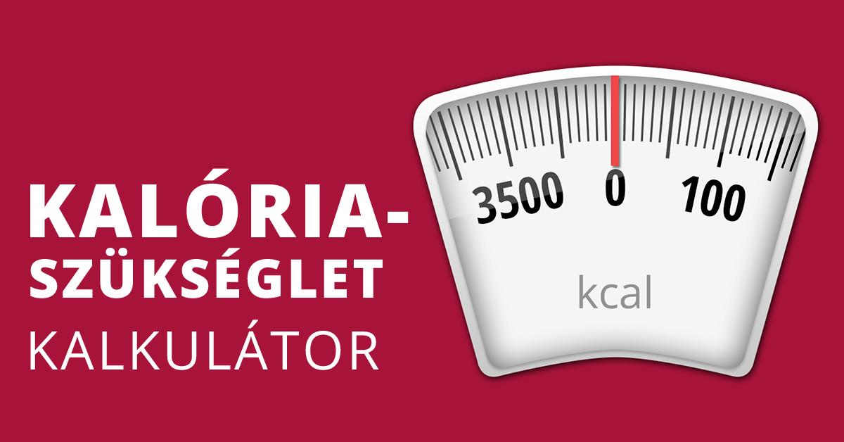 Így számítsd ki a napi kalóriaszükségleted | Well&fit