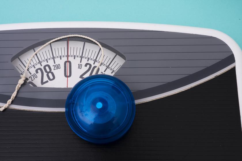 e36 fogyás 2 hetes diéta férfiaknak