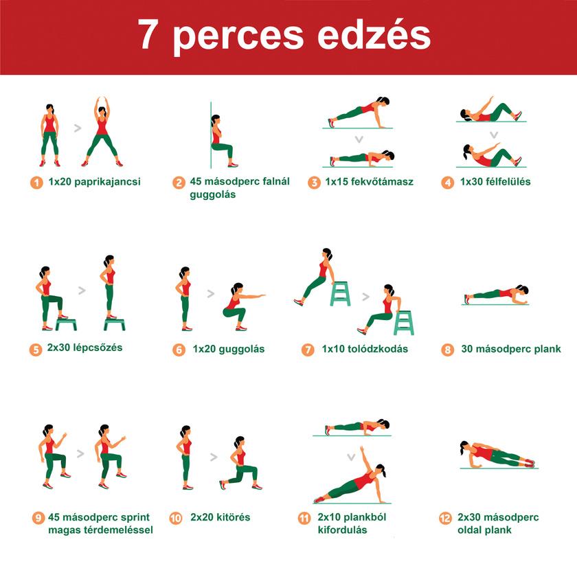 4 napos zsírégető edzésterv)