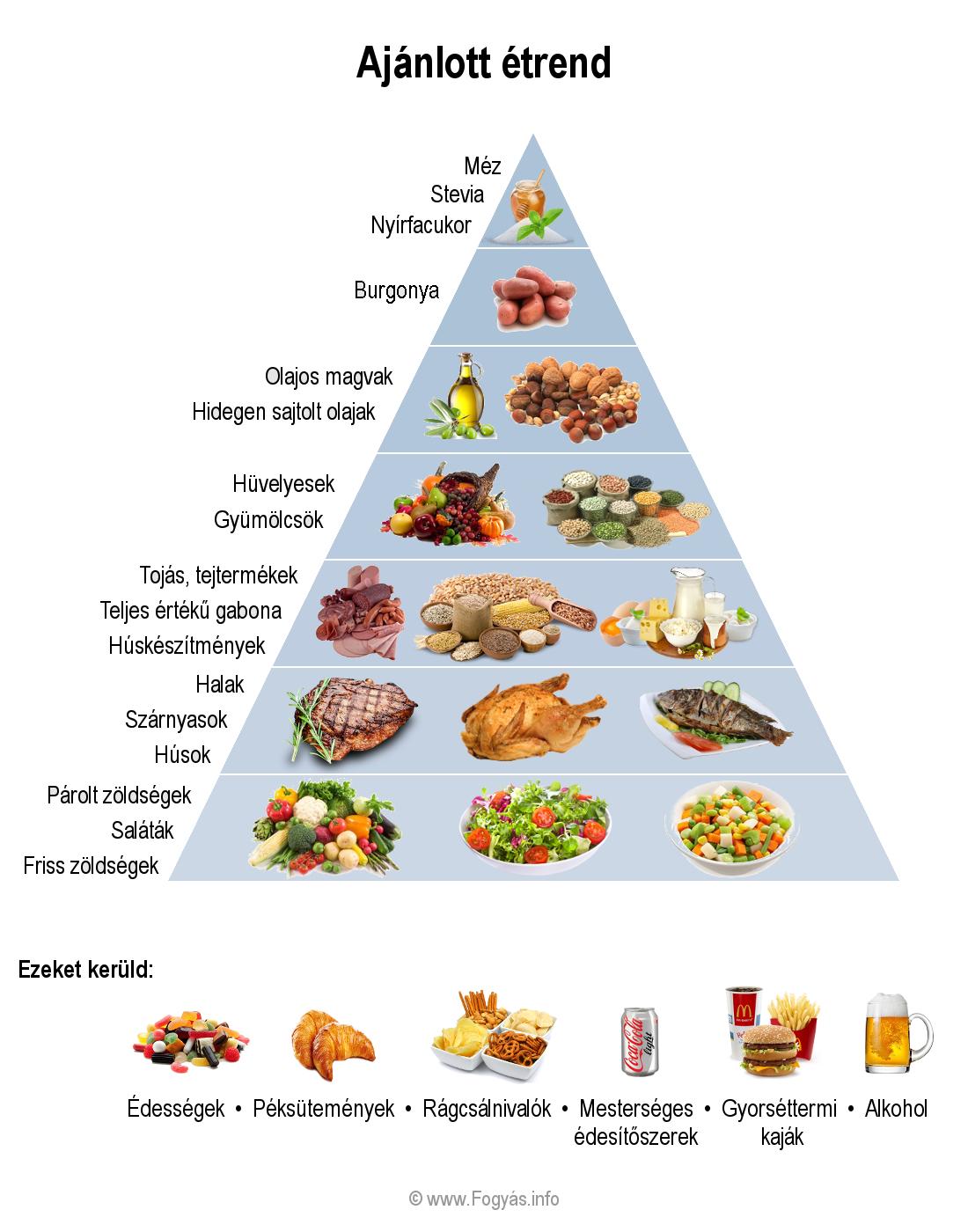 napi kalória bevitel fogyáshoz