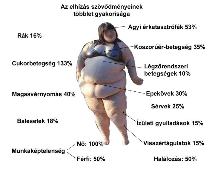 elhízott ember próbál lefogyni)