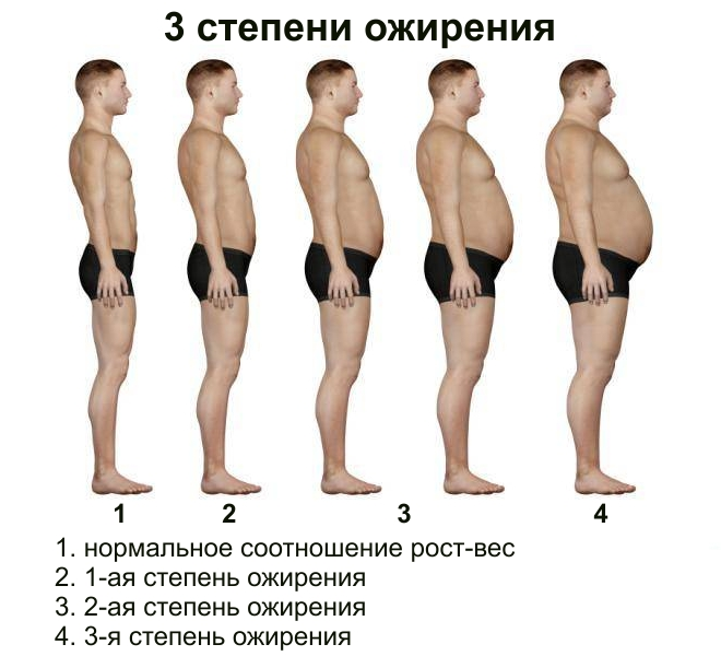 6 hónap alatt nem veszít súlyt)