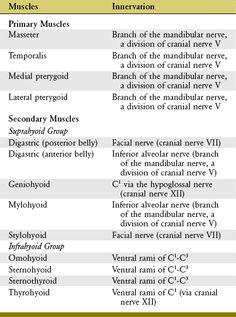 segít- e a lipidek a fogyásban?