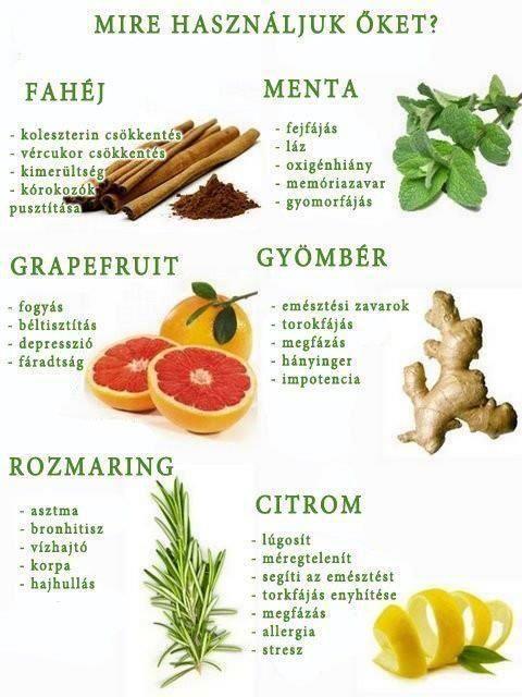 testroham jó a fogyáshoz)