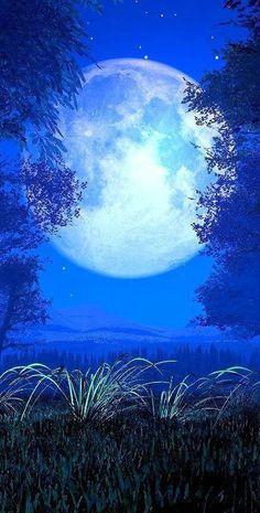 fogyás holdfény