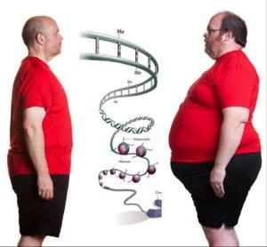 az idegek súlycsökkenését hívják veszítsen zsírt az oldalán