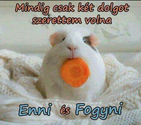 fogyni kell vicceket)