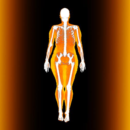 hogyan lehet elveszíteni a testzsírt súlyok nélkül