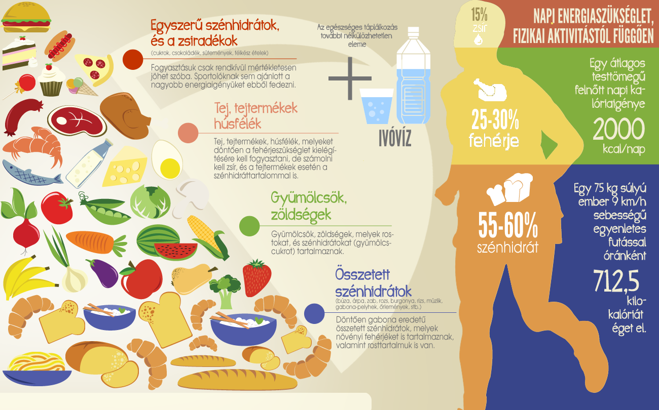 Így kell összeállítani egy egészséges napi menüt