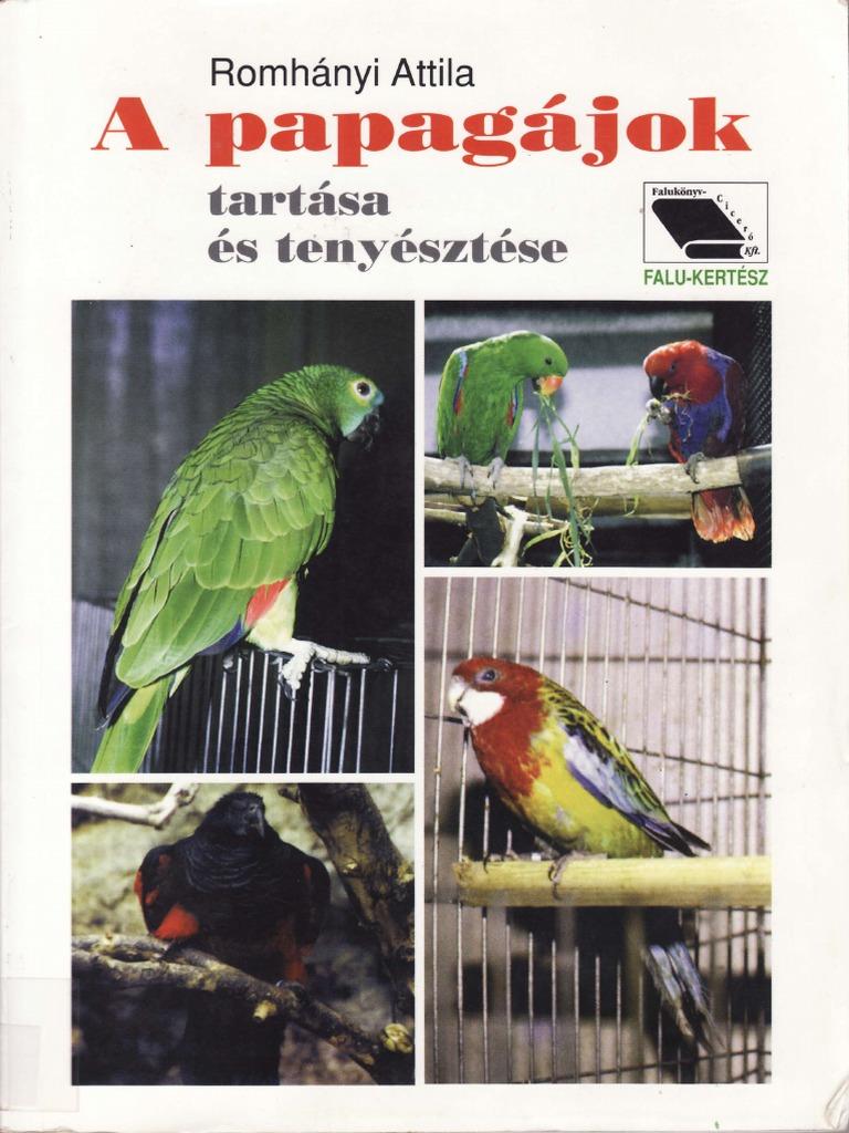 fogyás papagájokban)