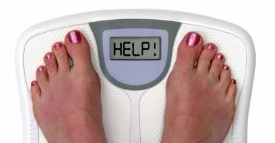 hogyan veszíthetek el több testzsírt?