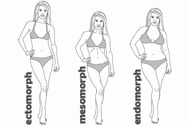 anyagcserét okozó zsír veszteség 5x5 fog veszíteni a zsírt