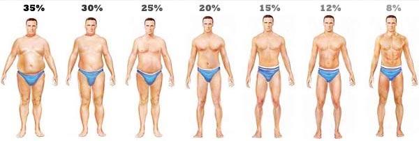 elveszíti a testzsír 10 százalékát