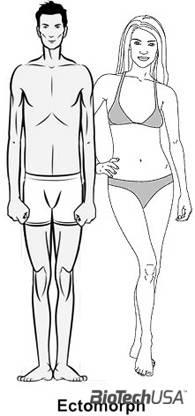testtípusok a zsírégetés érdekében