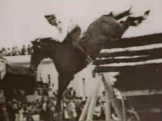 Lóbajnokok és tények róluk. Rekordok - lovak, mítoszok, mitikus lények, gyógynövények