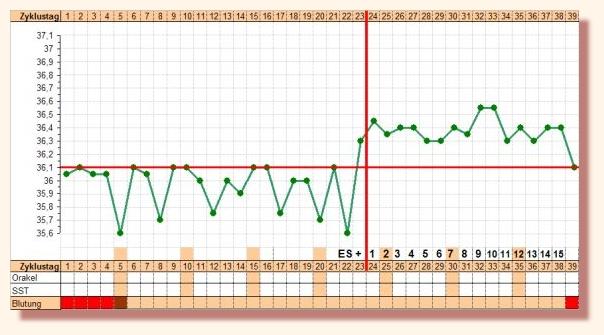 súlycsökkenési görbe elemzése