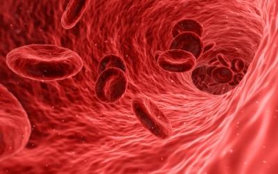 az alacsony hemoglobin és a fogyás okai)