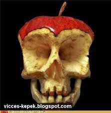 zsírégető koponya)