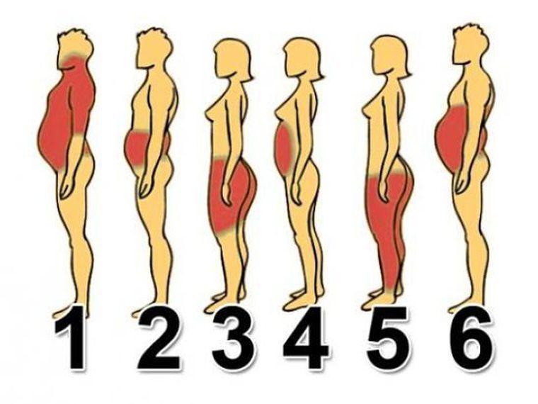 egészségügyi tippek a zsírégetésre 5- htp natrol a fogyáshoz