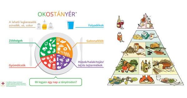 napi egészséges étrend