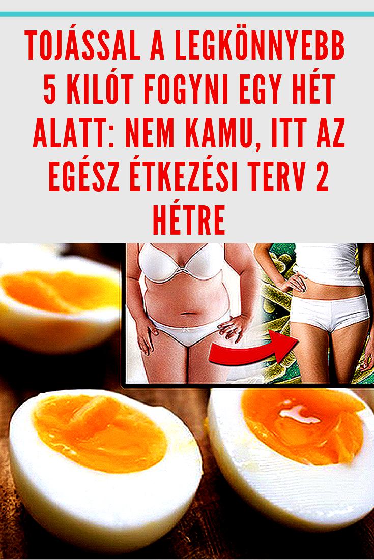 + Best Zsírégető images in | egészség, zsírégető, fogyókúra